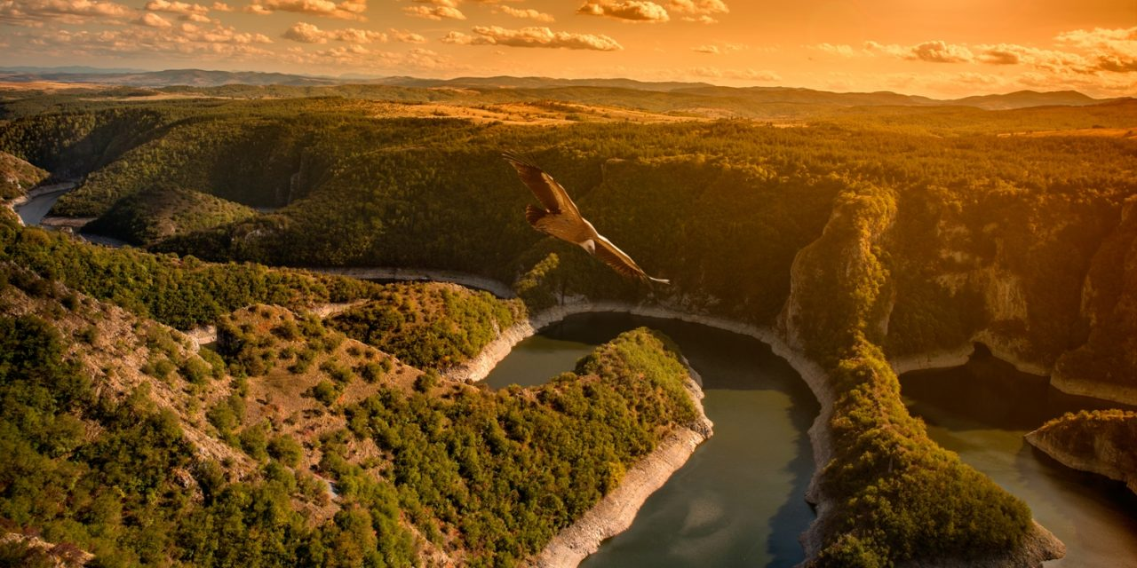 https://bsl.com.mt/wp-content/uploads/2019/09/shutterstock_725634796-Uvac-Lake-Serbian-Lakes-and-mountains-Page-5-1280x640.jpg