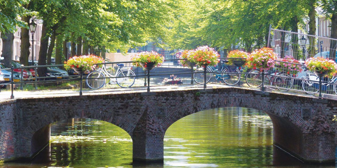 https://bsl.com.mt/wp-content/uploads/2020/07/Destination-The-Hague-1280x640.jpg